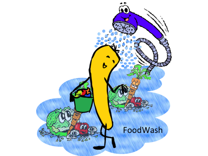 FoodWash